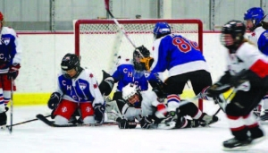 Mayo Clinic Study Reveals Types and Severity of Youth Ice Hockey Injuries