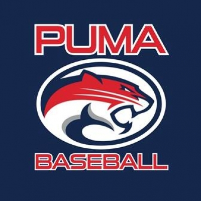 LV Pumas Baseball Team Looking for Players