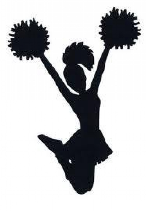 Lady Cobras Cheerleading Team (Adult Semi-Pro) Looking for Cheerleaders