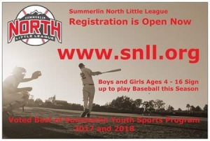 Summerlin North Little League Now Registering for Fall 2019